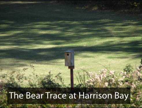 BearTraceHarrisonBay